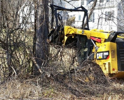 lot-land clearing-debris-cleanup-property development