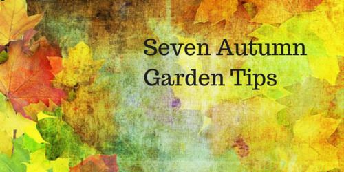 garden tips-landscaper-lawn-n-order