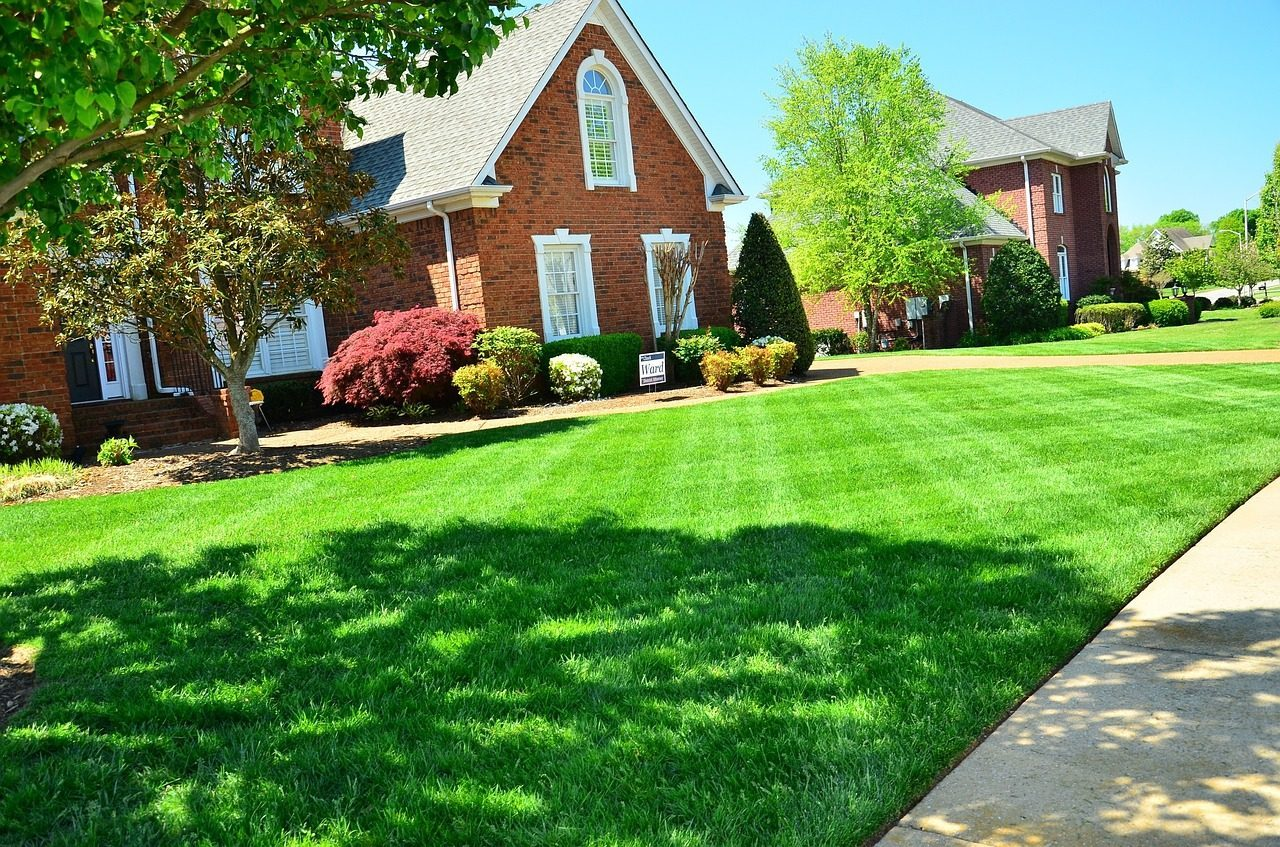 lawn care-maintenance-yard-Weaverville-Asheville