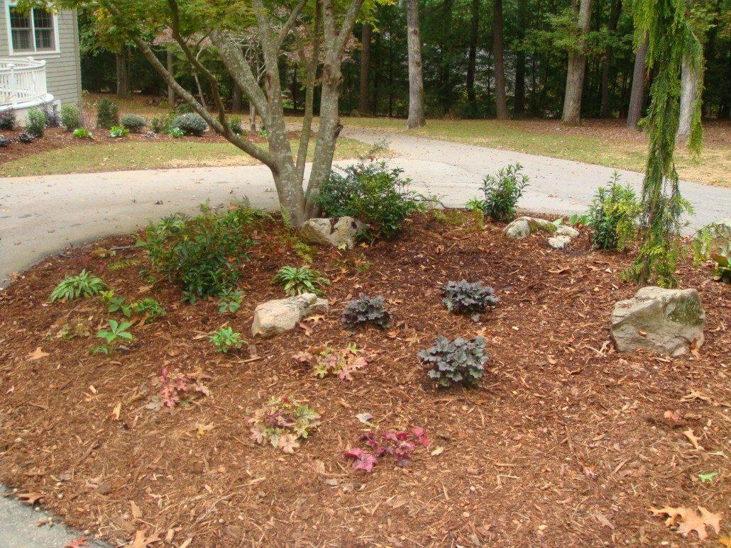 landscape design build lawn n order