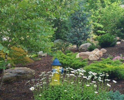 landscaper-Asheville-Weaverville-trees-mountain boulders-perennials