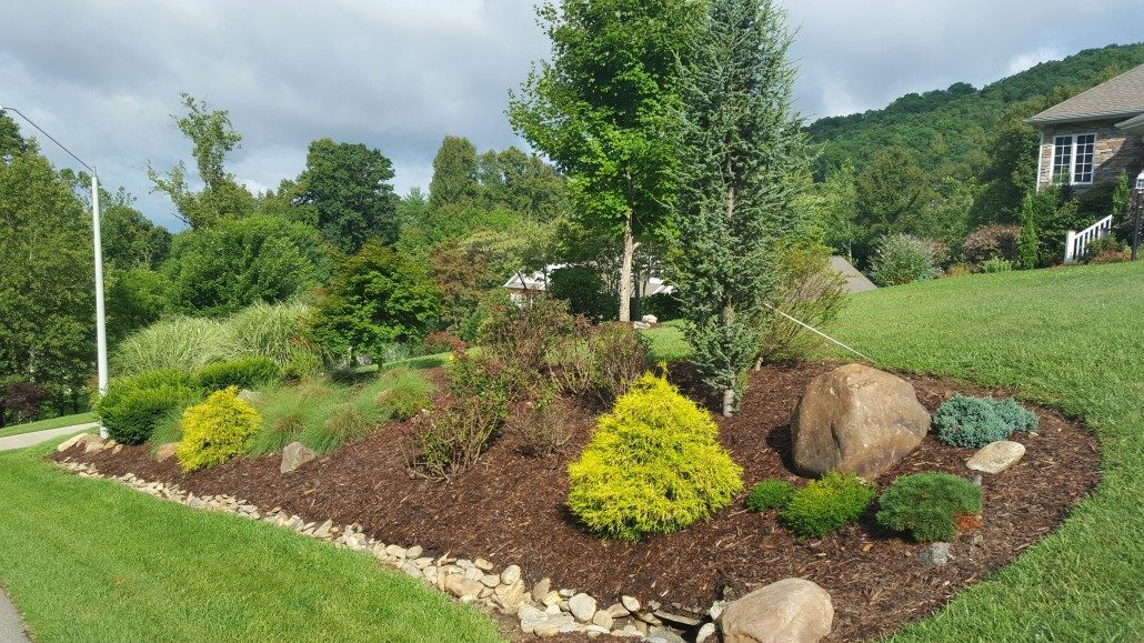 Landscaping Drainage Solutions Lot Land Clearing Trees