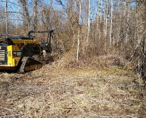 lot-land clearing-mulching-tree work