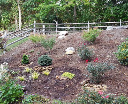 sloped-garden-hillside-steep-slope