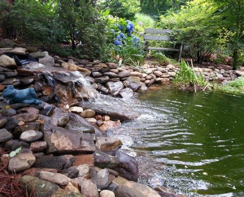 choosing a natural water feature.