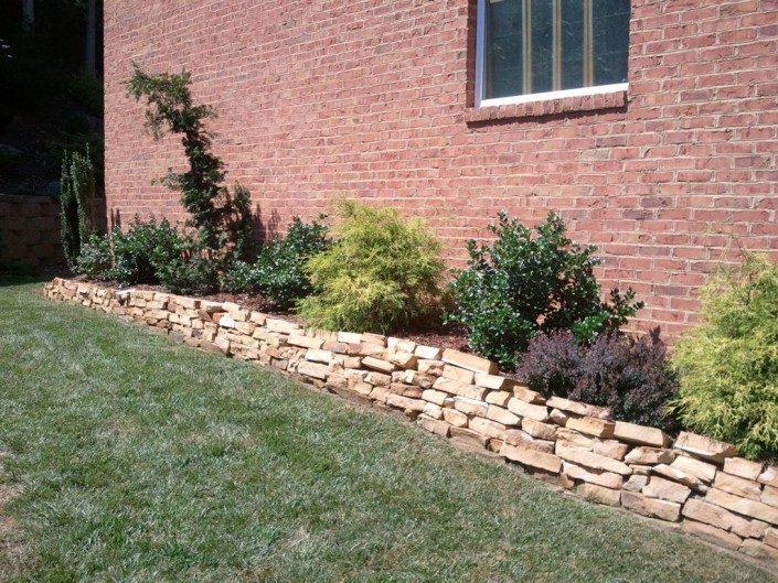 backyard-foundation plantings
