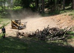 forestry mulching-low impact-sustainable