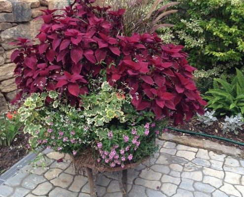 container garden-cobblestone pavers-landscape design-Asheville