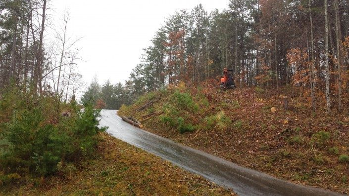 lot clearing-land-ivy cove