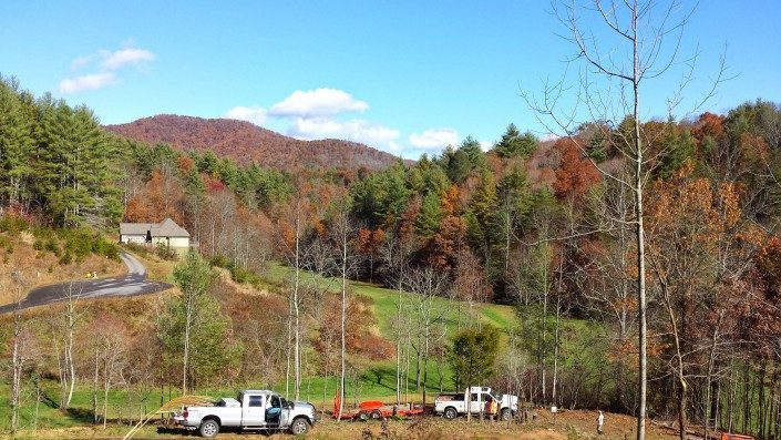 lot-land clearing-forestry mulching-Weaverville