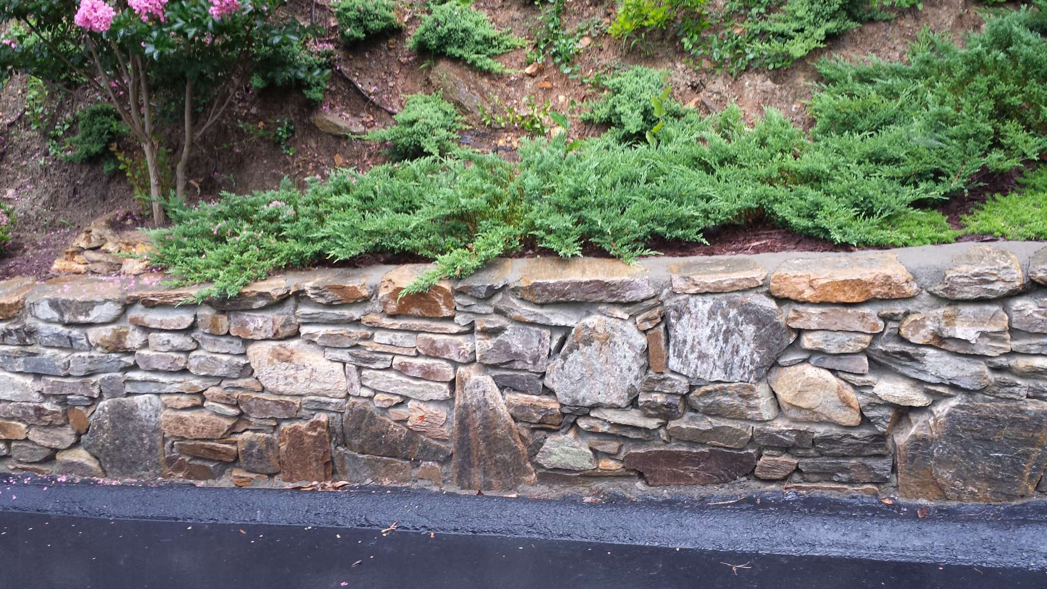 steep slope erosion control options lawn n order landscaping
