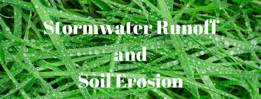 stormwater runoff-soil erosion-drainage-Asheville-landscape ideas